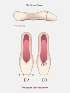 Adult Encore Pointe Shoe